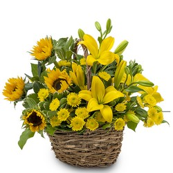 Basket of Sunshine from Blythe Flowers in Ottawa, IL